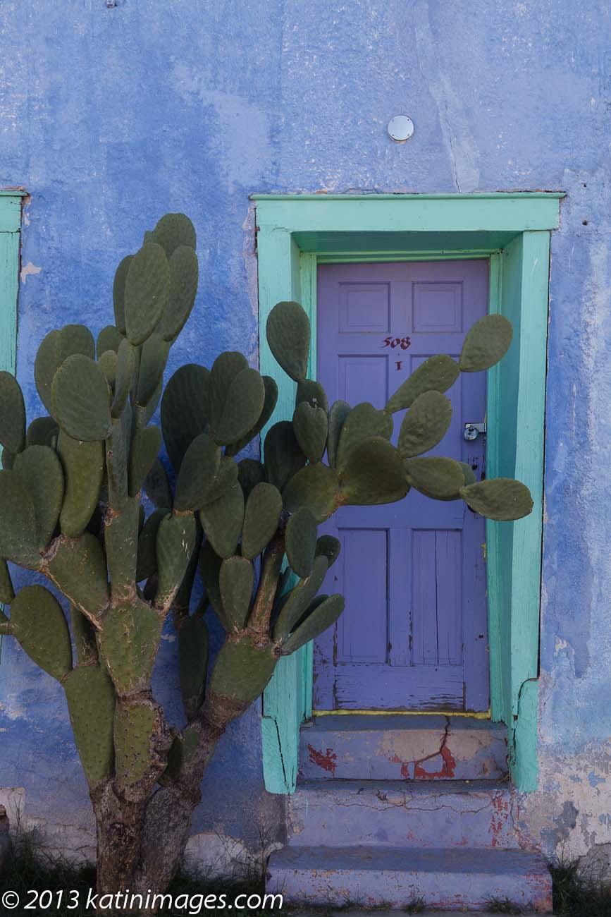 Cactus and door in the Presido historic district, Tucson, Arizona, USA