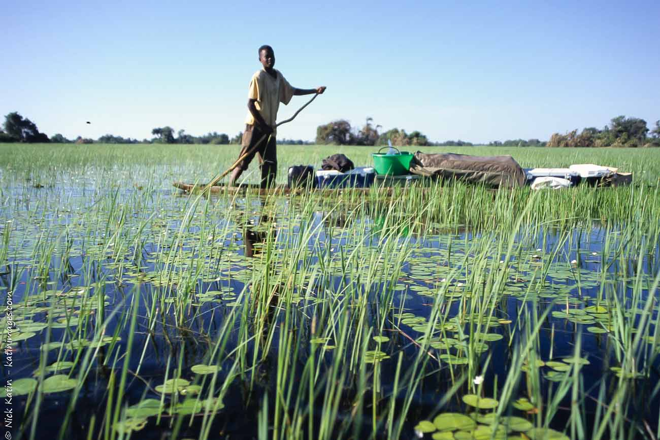 Young Poler on a makoro (canoe) in the Okavango delta, Botswana
