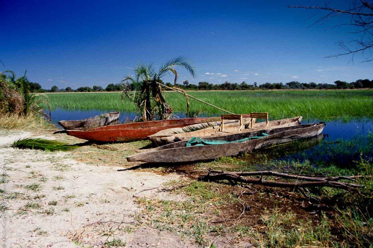 Dug out canoes or makoros at the Okavango delta in Botswana