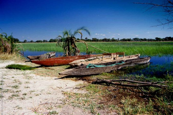 Dug out canoes or makoros at the Okavango delta in Botswana