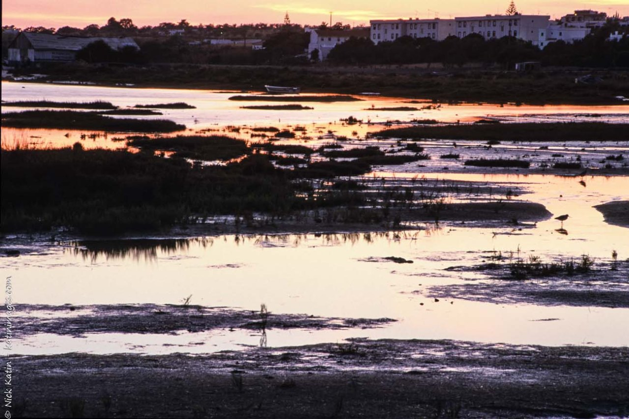 Coastal marshland at dusk near Faro in Southern Portugal