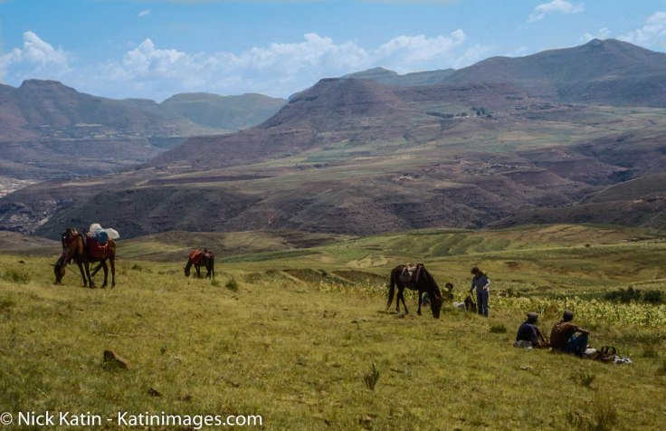 Ponies and Riders take a break with the backdrop of the Maloti Mountains of Lesotho.