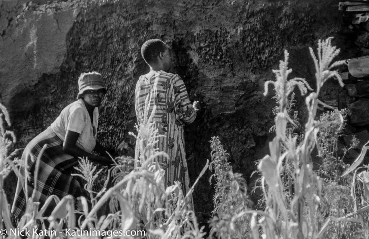 Women cleaning the outside of a mud hut near Malealea Lesotho