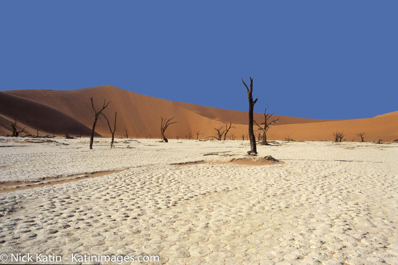 Deadvlei is a white clay pan located near the more famous salt pan of Sossusvlei, inside the Namib-Naukluft Park in Namibia.