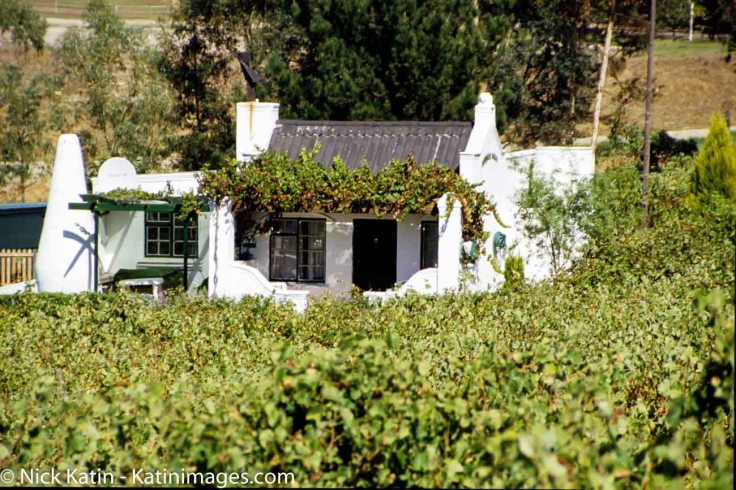A small winery near Stellenbosch beneath the Stellenbosch Mountains