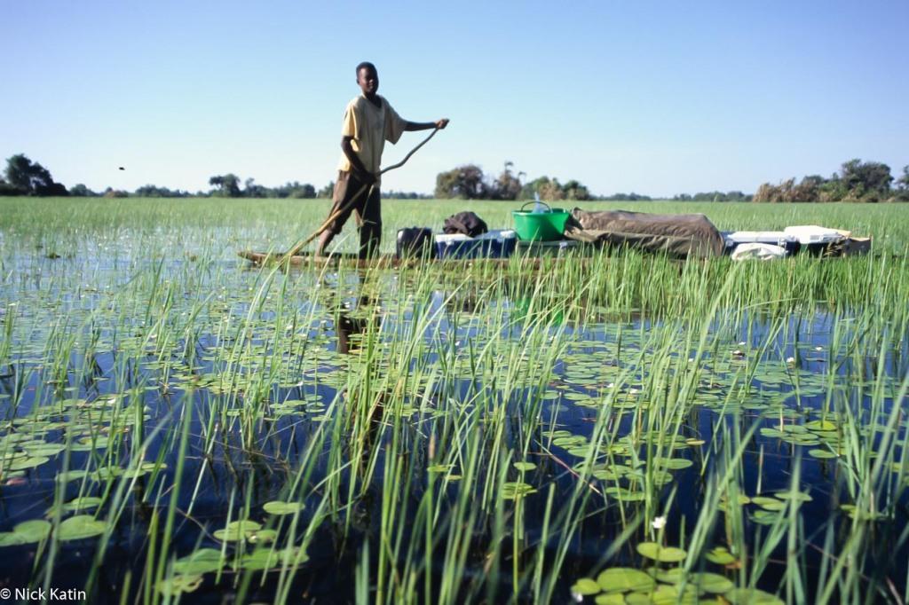 Young Poler on a makoro (canoe) in the Okavango delta, Botswana