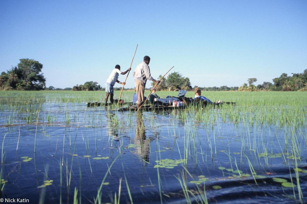 Polers on the makoros (canoe) in the Okavango delta, Botswana