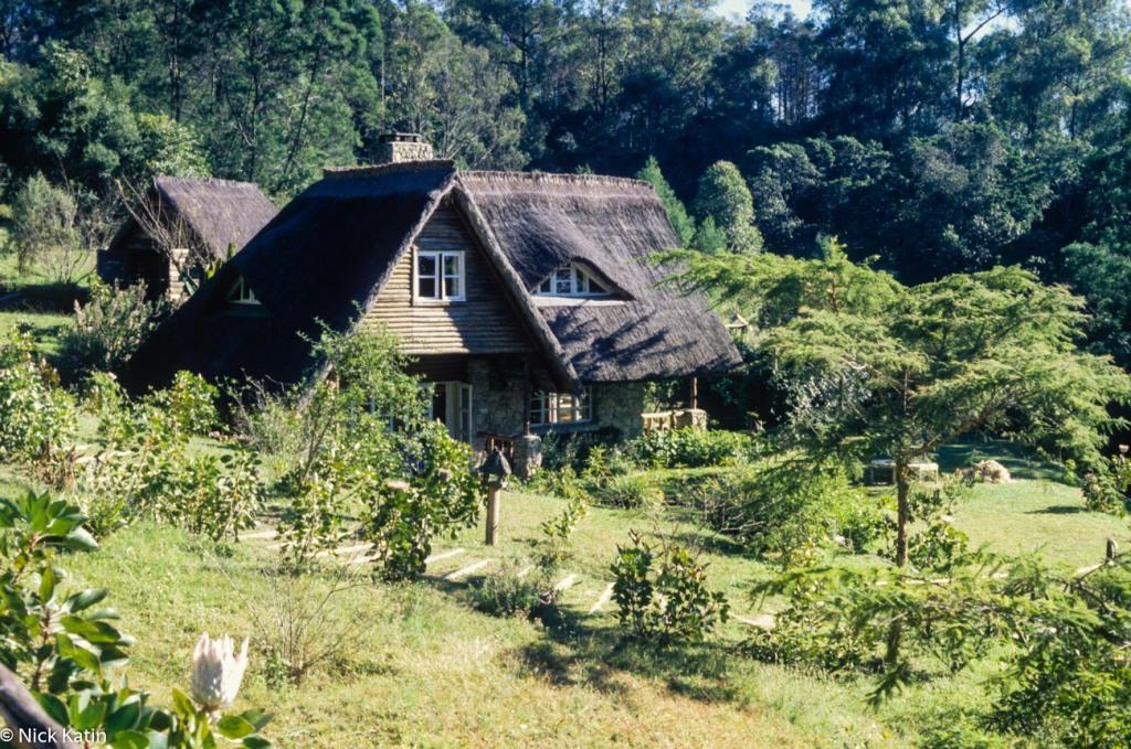 Tony's coffee house in the Vumba in Zimbabwe