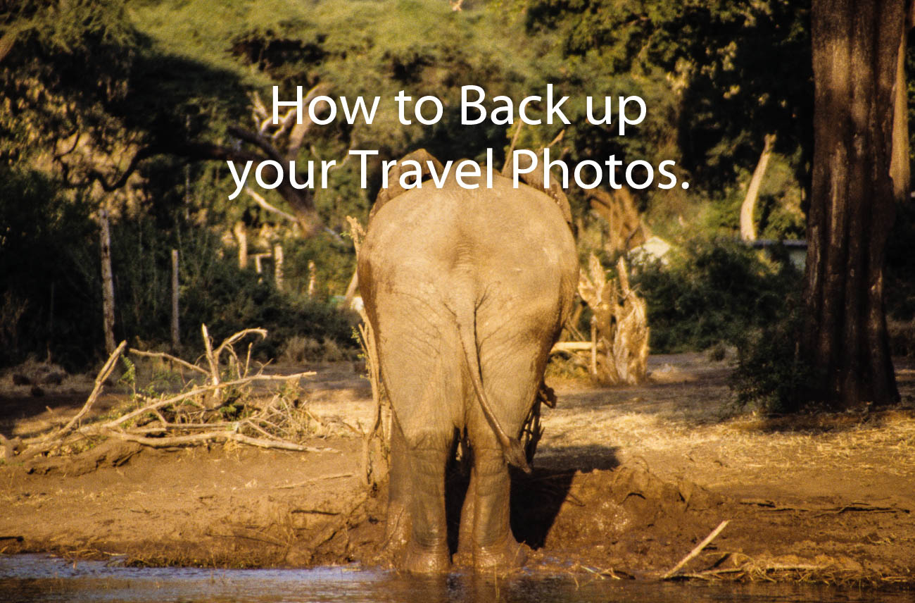 An elephant shows us his rear end by the edge of Chobe lake in Botswana