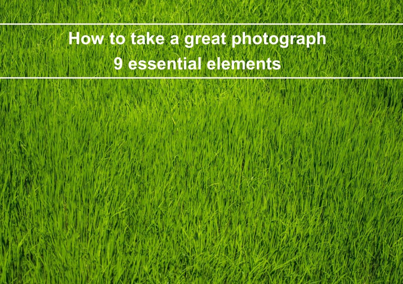 How to Take a Great Photograph – 9 Essential Elements