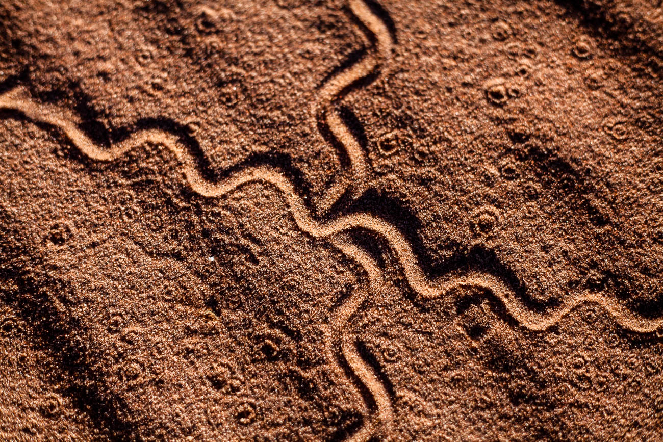 Sand trails near Roebuck bay, Broome, Western Australia