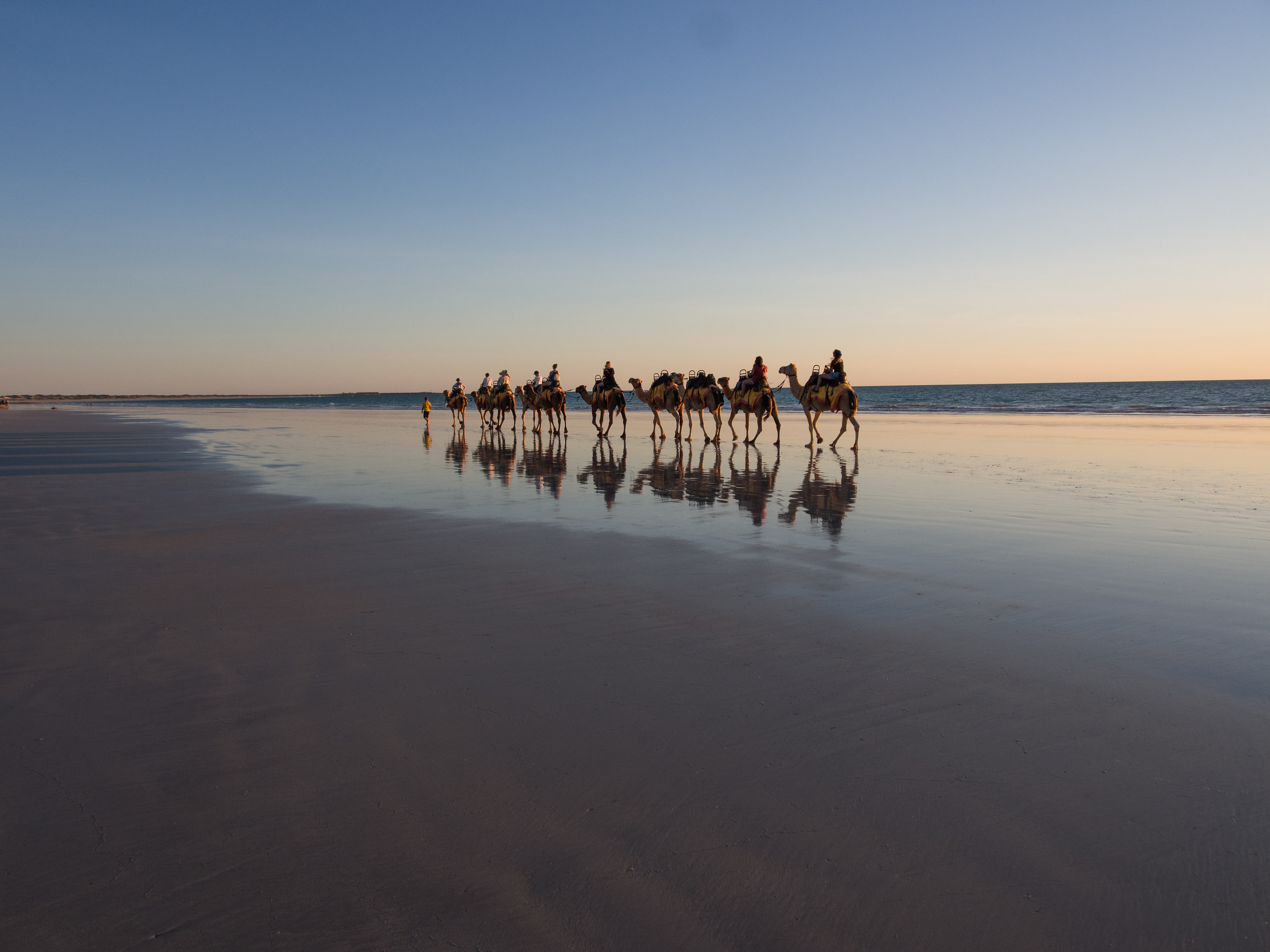 Camel Ride on Cable Beach in Broome Western Australia at dusk.