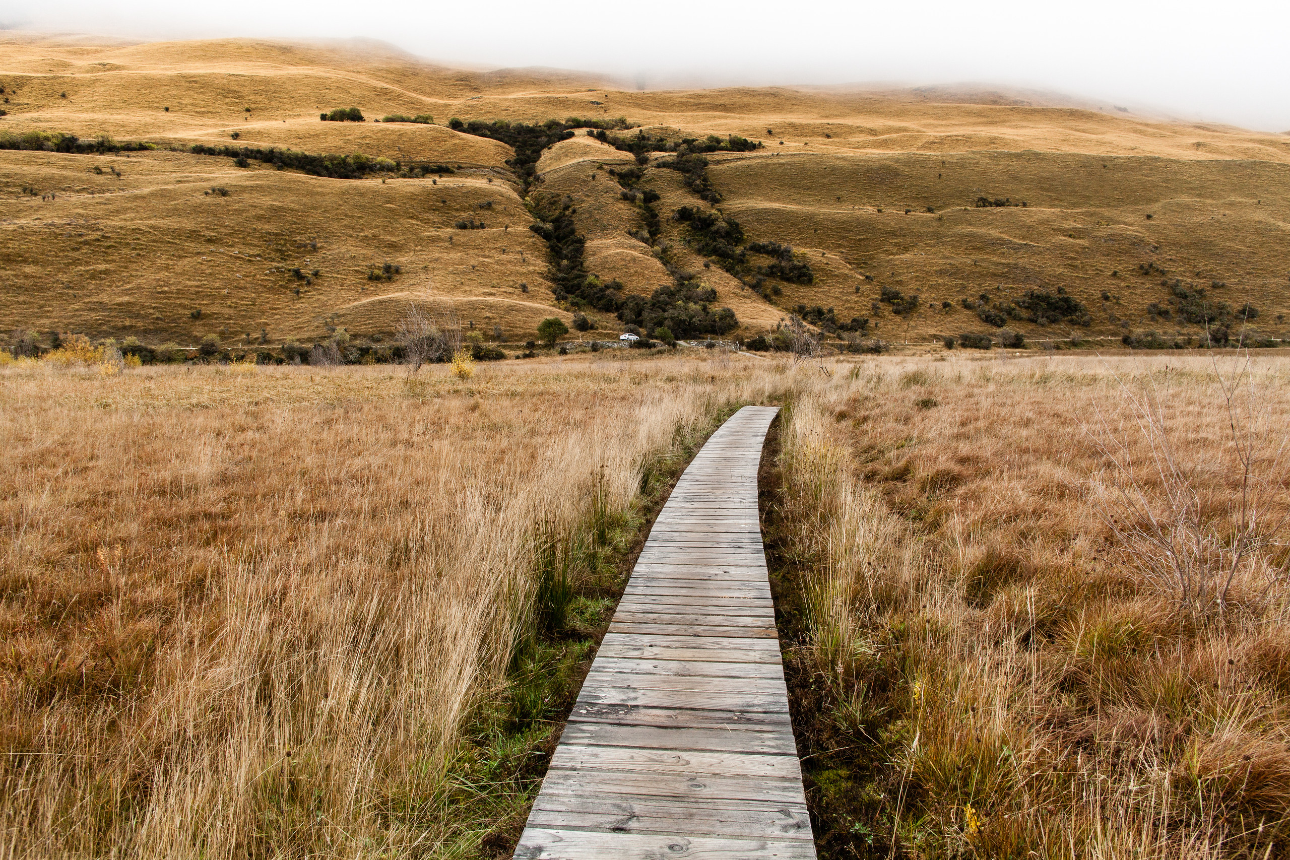 A boardwalk section of a wall around Moke Lake nr Queenstown, New Zealand